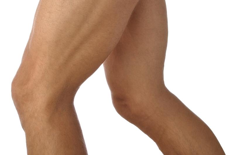 Musculus vastus lateralis / Äußerer breiter Oberschenkelmuskel | Med ...
