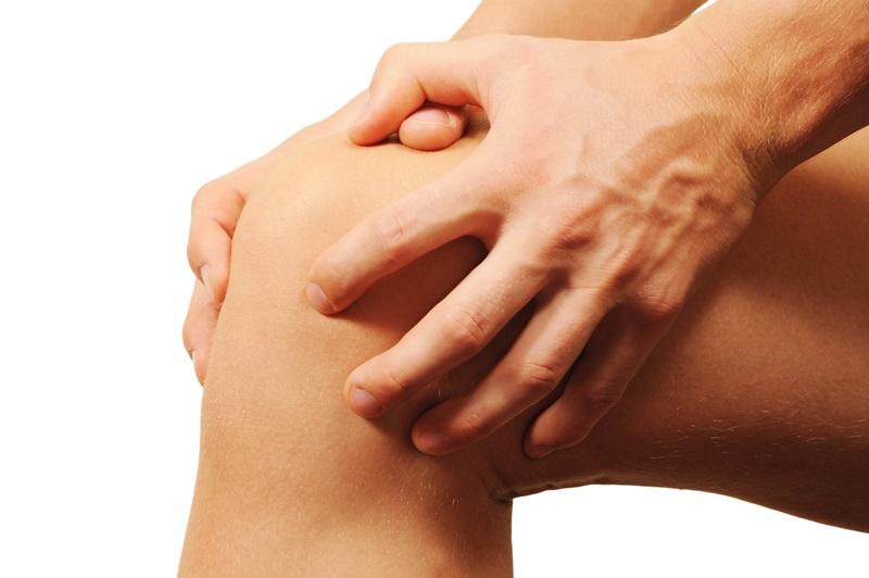 Ligamentum / Bänder im Knie – Anatomie der Kniegelenk Bänder ...